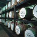 6月16日(土) ワインセンターにて「十勝ワイン スペシャルテイスティング」イベントのご案内