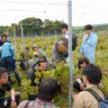 2018年度「北海道ワインアカデミー」の取り組み紹介、事務局からのお知らせ